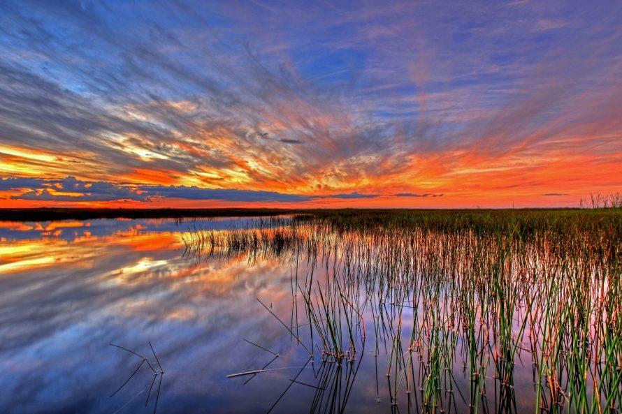 Planing a honeymoon in Florida disneyland