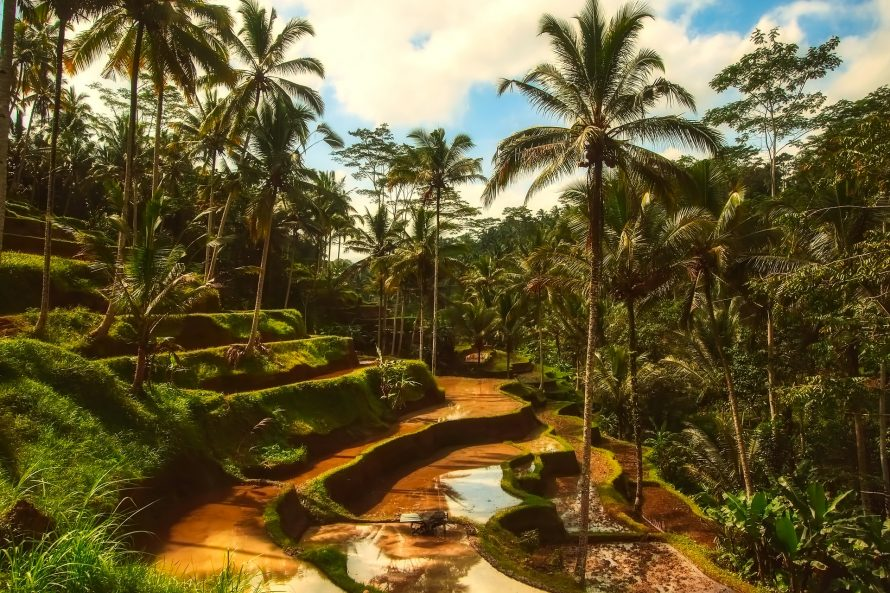 Bali top honeymoon destinations.